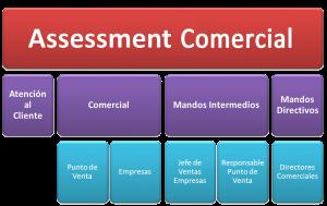 Assessment Comercial